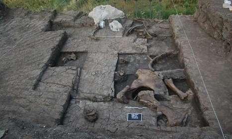 Elephant Butchering Site Found in Greece - Archaeology Magazine | Aux origines | Scoop.it