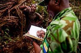 African Development Bank and WWF call for urgent action to combat wildlife crime | Wildlife Trafficking: Who Does it? Allows it? | Scoop.it