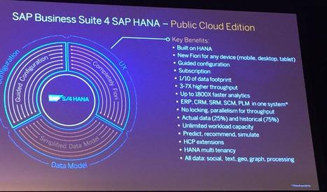 The SAP® Business Suite 4 SAP HANA® (SAP S4/HANA) FAQ | SAP Security and Quality | Scoop.it