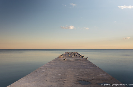 SEAGULLS RESTING ON A SEA BRIDGE AT SUNSET - PAVEL GOSPODINOV PHOTOGRAPHY | PAVEL GOSPODINOV PHOTOGRAPHY | Scoop.it