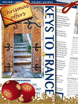 Special Christmas Offer | French books | Scoop.it