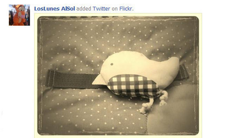Ventajas e inconvenientes para compartir fotos: Flickr, 500 px vs. Facebook   Las TIC y la Educación   Scoop.it
