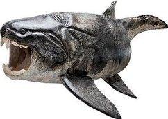 Ancient fish had killer teeth › News in Science (ABC Science) | GeekGasm | Scoop.it