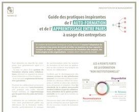 Infographie. Pratiques d'apprentissage inspirantes à l'usage des entreprises | Formation professionnelle - FTP | Scoop.it