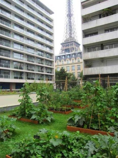 Végétalisons la ville   Jardins urbains   Scoop.it