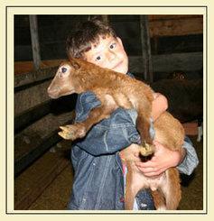Yo quiero ser un veterinario|Padres Hispanos | veterinaria | Scoop.it