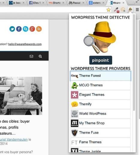 3 manières de détecter un thème WordPress et ses plugins | Time to Learn | Scoop.it