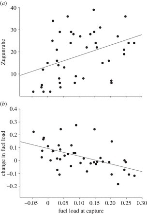 Data from: Size and accumulation of fuel reserves at stopover predict nocturnal restlessness in a migratory bird   Data Science   Scoop.it