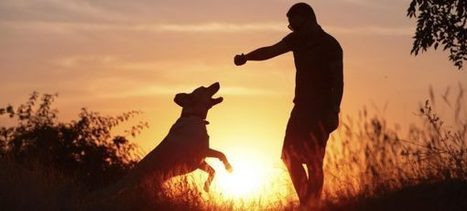 possibile anche per i nostri amici animali?   Bau Bau News - Amici a 4 Zampe   Scoop.it