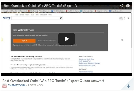 Theme Zoom Blog – Best Quick SEO Tactic: Video Sitemaps | Content Curation Is Not Social Media | Scoop.it