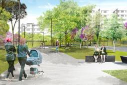 Parco urbano di Japigia: un progetto naturalistico di nome e di fatto - AmbienteAmbienti | Gli alberi nei giardini | Scoop.it