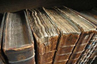 Une nouvelle formulation pour l'exception Bibliothèques dans la loi Hadopi | Culture et Numérique | Scoop.it