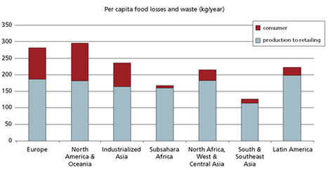 Key facts on food loss and waste you should know! | Development Blog Watch | Scoop.it