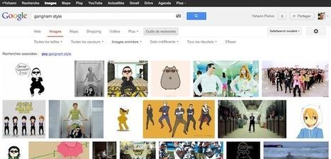 Google lance la recherche de GIF animé, Internet pleure de joie | BlogNT : Le Blog des Nouvelles Technologies dédié au Web, aux nouvelles technologies et au développement Web | Veille, curation, IE, KM, E-réputation | Scoop.it