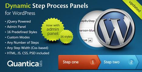 Dynamic Step Process Panels for WordPress | My Best Wordpress Plugins | Scoop.it