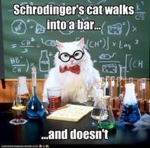 Fantascienza.com: Fantascienza.com, il meglio della settimana del gatto di Schrödinger | notizie mie | Scoop.it