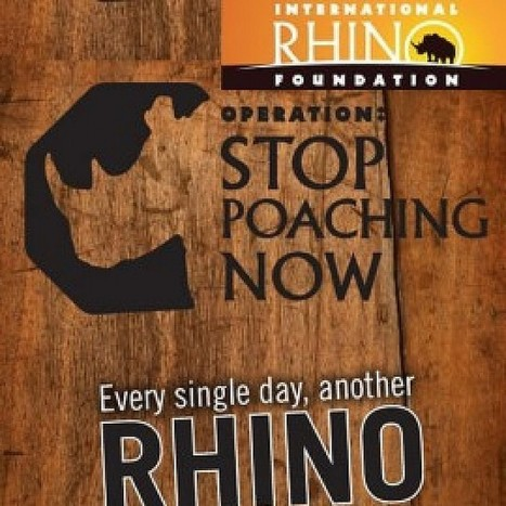 Stop Rhino Poaching Video Advert | ADMAREEQ - Quality Marketing and Advertising Campaigns Blog | Marketing&Advertising | Scoop.it