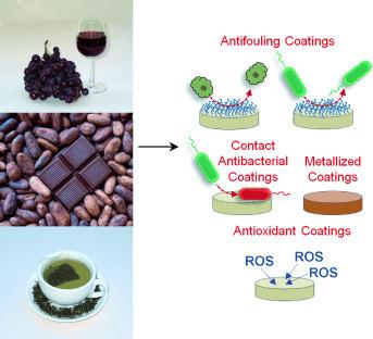 Colorless Multifunctional Coatings Inspired by Polyphenols Found in Tea, Chocolate, and Wine   Medical Engineering = MEDINEERING   Scoop.it