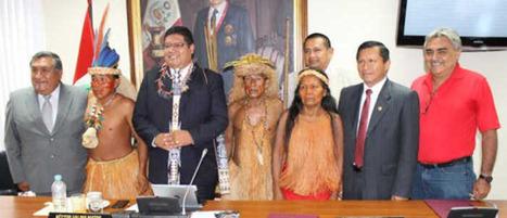 Viceministro de Interculturalidad : formular las leyes y normas que favorezcan los derechos de las poblaciones andinas, amazónicas y afroperuanas. | Un vistazo de la actividad cultural peruana | Scoop.it