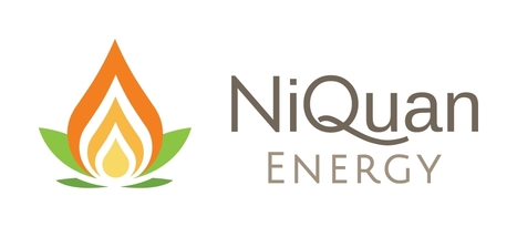 Homestrings Webinar - Investors Series Niquan Energy Gas-to-Liquid Bond, Trinidad & Tobago 16:00 GMT on 12th November | Diaspora investments | Scoop.it