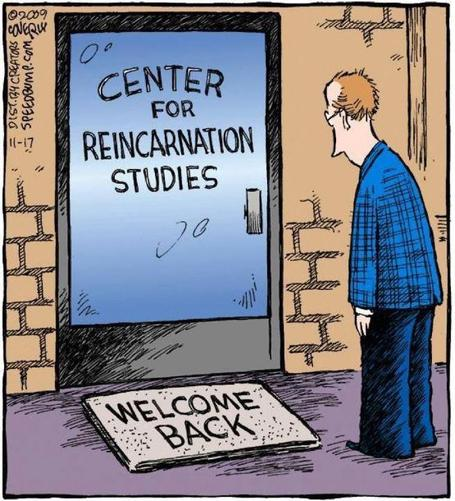 Reincarnation | Intelligent humor | Scoop.it