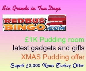 Hurry! Win Six Grands in Two days at Redbus Bingo | Free Slots Online | Scoop.it
