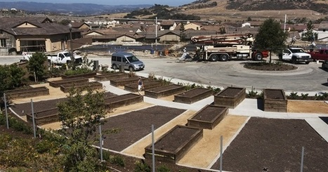 'Agrihoods' Offer Suburban Living Built Around Community Farms, Not Golf Courses | Agriculture, Food Production & Rural Land Use Knowledge Base | Scoop.it