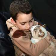 5 Ways Cats Are Great Therapy for Anxiety or Depression in Kids   Cat Club Elite News   Scoop.it