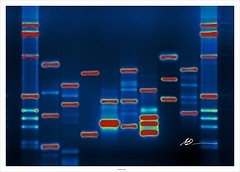 DNA-Sequencing Factory Could Be The Future If It Survives The Present - Forbes | SynBioFromLeukipposInstitute | Scoop.it