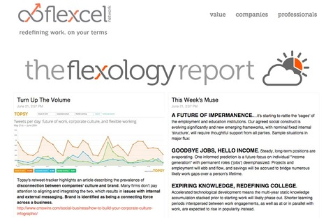 Flexology Report - My ASP.NET Application | Showcase of custom topics | Scoop.it