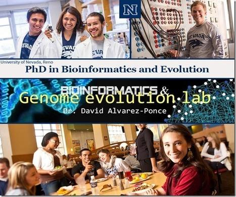 PhD in Bioinformatics @ the University of Nevada | bioinforamtics | Scoop.it