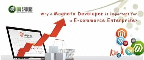 Why a magneto Developer is Important for a E-commerce Enterprise | What is Search Engine Optimization? | Scoop.it