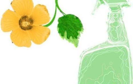 Perché scegliere un detersivo ecologico - inquinamento, detersivi ecologici | PULIRE NATURALE | Scoop.it