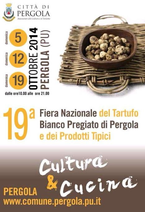 19th Fair of the Prized White Truffle and typical local products - Pergola, PU | Food in Umbria | Scoop.it