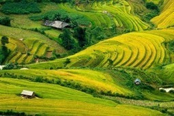Ha Giang adventure tour 3 days 2 nights | Vietnam Holiday Packages | Scoop.it