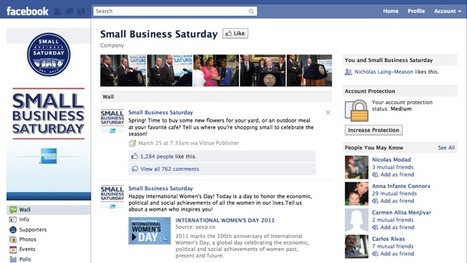 American Express Case Study - Small Business Saturday | Social Media Strategist | Scoop.it
