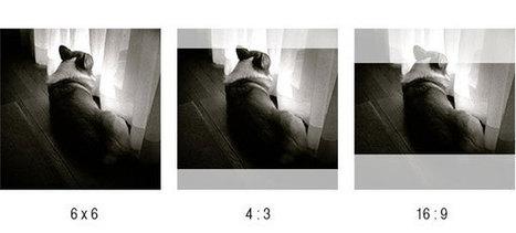 Features - Badass Cameras : World's First iPhone Digital Back Module | medium format digital photography | Scoop.it
