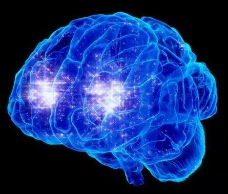 FAIT-RELIGIEUX | Votre cerveau pendant la prière | cerveau | prière | étude | neurosciences | | | DEPnews développement personnel | Scoop.it