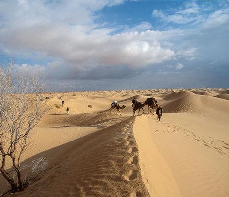 Sahara : l'eau du désert moins fossile qu'on le croyait | Le Sahara | Scoop.it