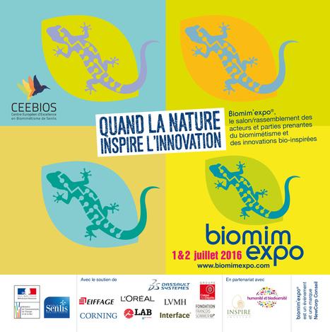 Biomim'expo | Alain Renaudin | Scoop.it