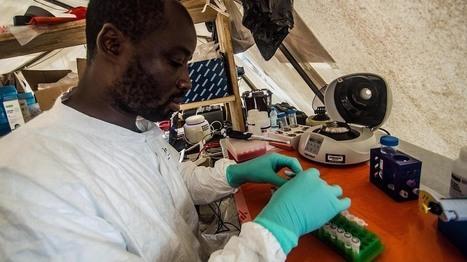 Ebola Is Rapidly Mutating As It Spreads Across West Africa - WBUR | Population & Medical Genomics | Scoop.it