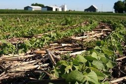 No-till agriculture may not bring hoped-for boost in global crop yields, study finds | Sustainability Science | Scoop.it
