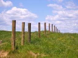 Fence Post Economics | Sustainable Farming | Scoop.it