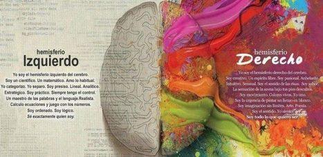 Neuropsicología y Educación | Recull diari | Scoop.it