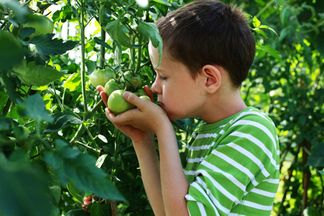 Try It, You'll Like It! Encouraging Youth to Eat What They Grow in the Garden - eXtension | School Food News | Scoop.it