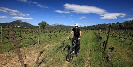 Vin et VTT électrique vont de paire autour du Pic Saint-Loup (Hérault)   un peu de détente   Scoop.it