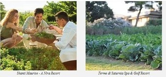 Leading Hotels ups sustainability efforts via farms, gardens - Luxury ... | Sustainable Tourism | Scoop.it