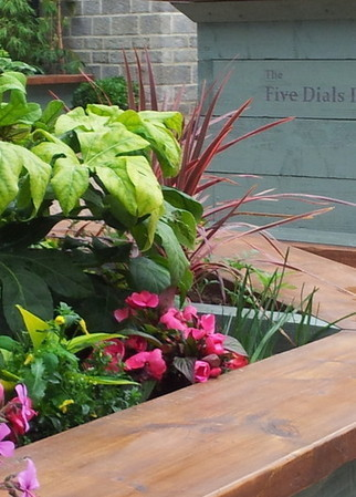 Welcome to The Five Dials Inn! | Taunton, Somerset | Scoop.it
