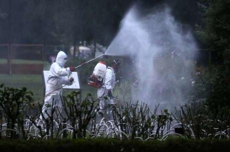 Rapport de l'EFSA. Pesticides : leur lien avec la maladie de Parkinson expliqué   EntomoNews   Scoop.it