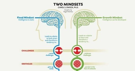 Fixed vs. Growth: The Two Basic Mindsets That Shape Our Lives | School Librarians | Scoop.it